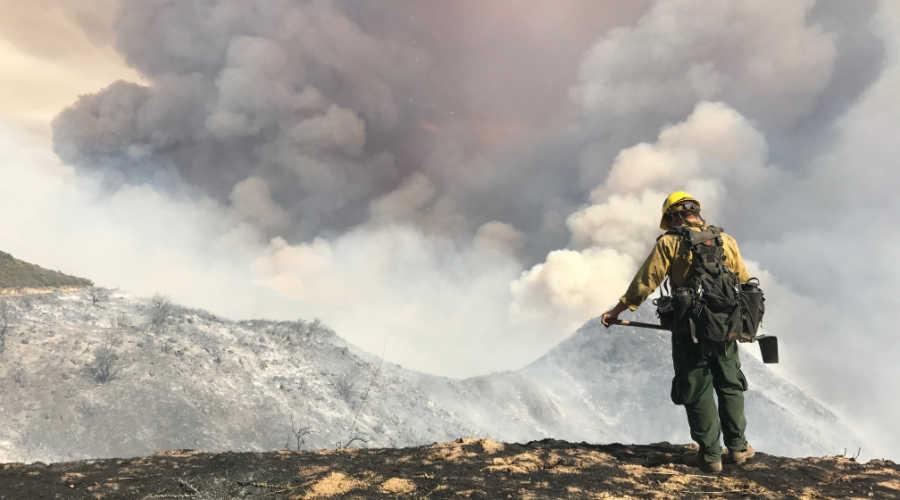 Contaminación por incendios forestales, un problema sin fronteras