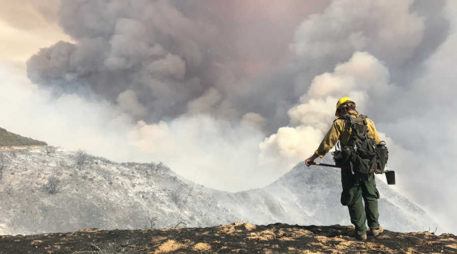 Wildland fire sensor, a solution to a problem without borders